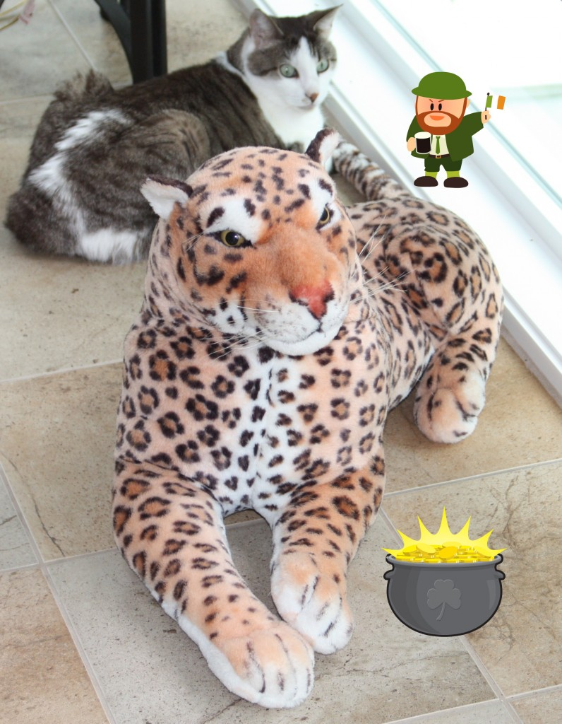 Lazy Leopard and Gracey Luck o'the Irish Contest