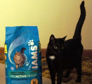 Mercy with Iams