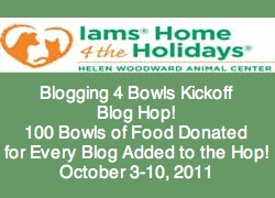 Iams Home 4 the Holidays Blogging 4 Bowls