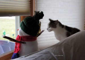 Keeping watch with snowman