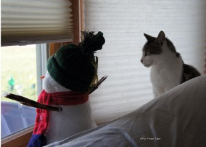 snowman and gracey