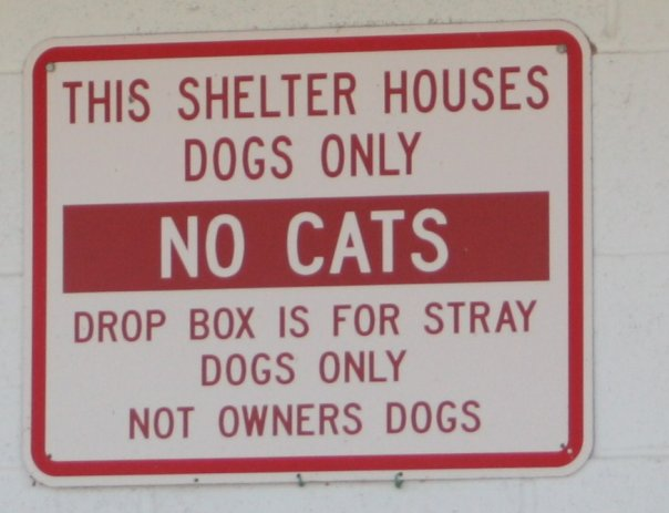 The sign from the Dog Shelter where I was found