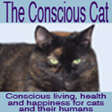 Conscious Cat Button