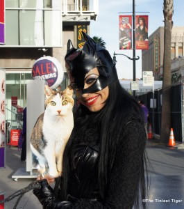 Gracey and Cat Woman