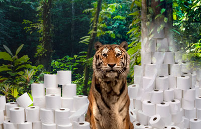 WWF Tiger and Toilet Paper