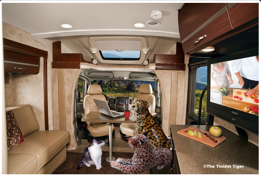 Gracey's Winnebago inside copy