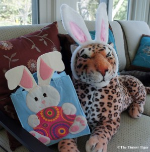 Lazy Leopard with Rabbit Ears