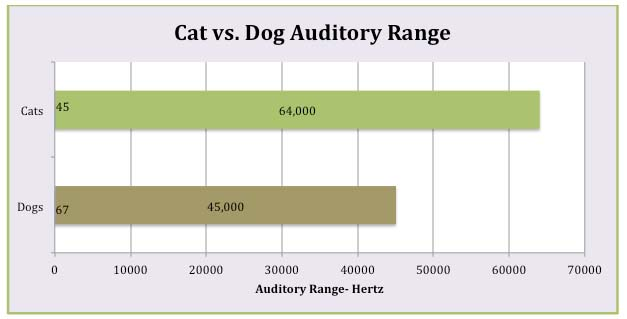 Dogs Vs Humans Hearing Frequency