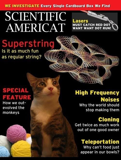 Scientific Americat