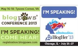2013 Speaker Badges