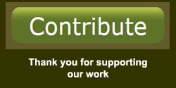 contribute button wideget