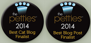 Petties Badges for 2014