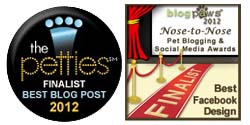 20120 blog finalist images