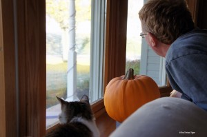 Paul and Gracey waiting for the ginkgo leaves to dance last year.