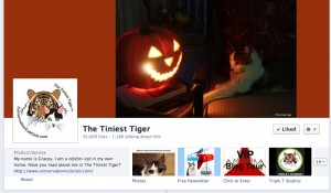 The Tiniest Tiger Facebook Page