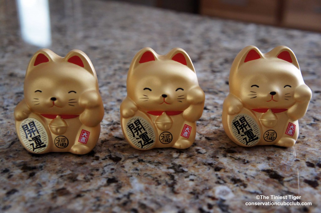 Maneki-neko