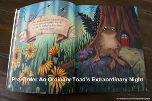 An Ordinary Toad's Extraordinary Night