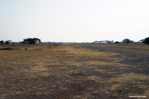 Runway outside of Amboseli