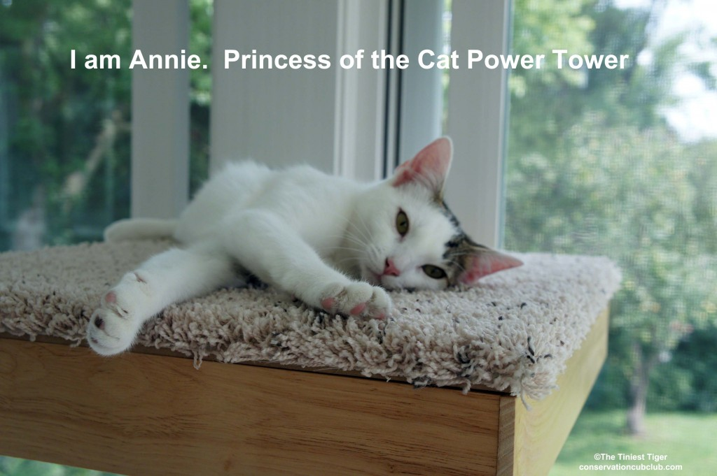 Annie on top of Cat Power Tower