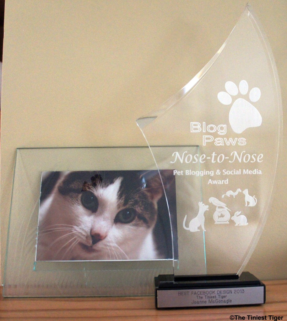 BlogPAws Award
