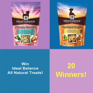 Ideal Balance Treat Giveaway