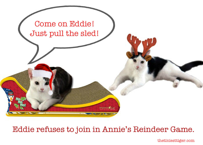 Annie and Eddie Reindeer games