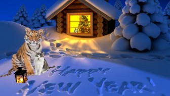 Our New Year's Wish For All Cats Big and Small