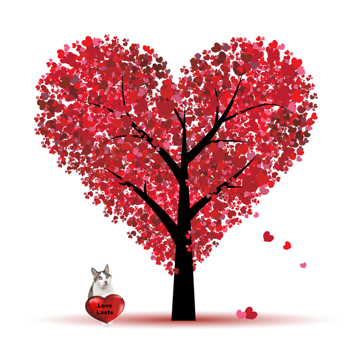 Valentine tree love lasts