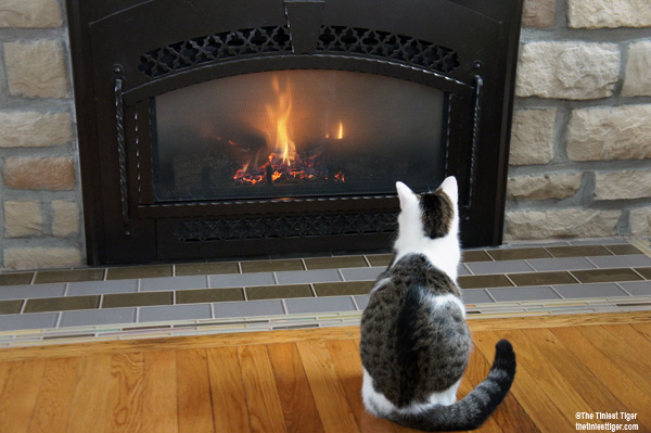 Annie sitting in front of fireplace