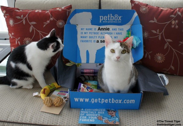 Annie and Eddie with PetBox