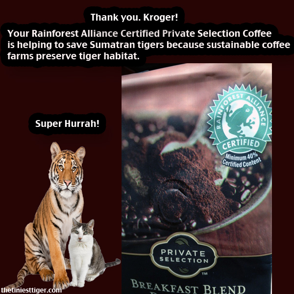 Kroger coffee tiger and gracey