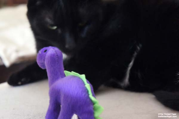 MErcy with SuperCat dino