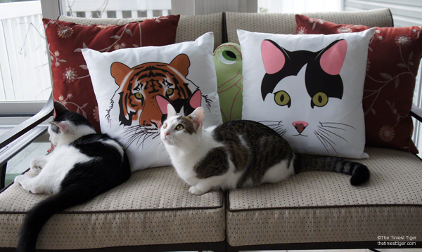 Annie and Eddie with TTT pillows
