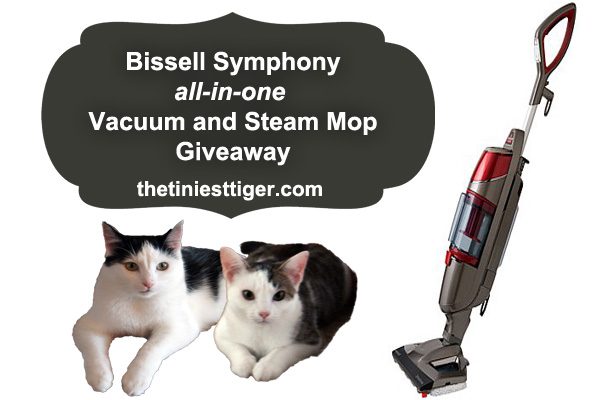 Biseell Symphony Giveaway image