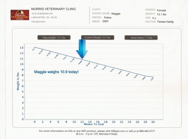 Maggie's Weight Chart progress