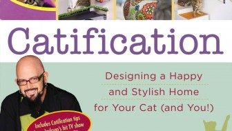 Catification cover image