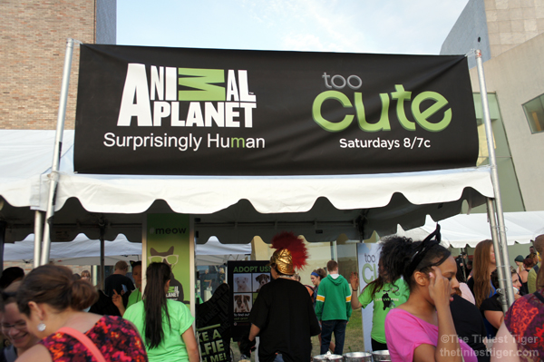Catvidfest sponsor Animal Planet