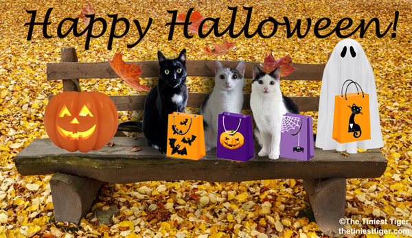 halloween park bench with cats