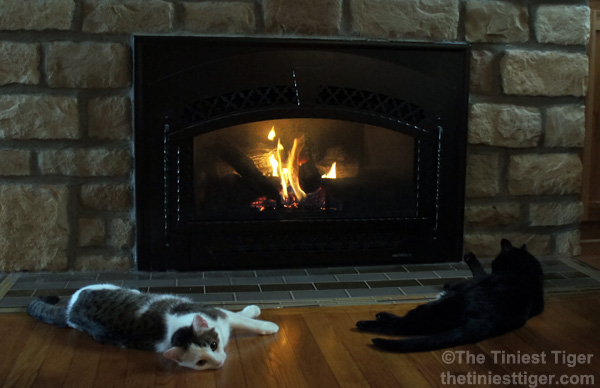 Annie and Mercy in front of fireplace