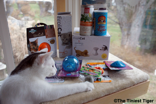 Annie with toys and treats for kitten associates