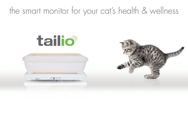 Tailio-smart-health-monitor-cats3