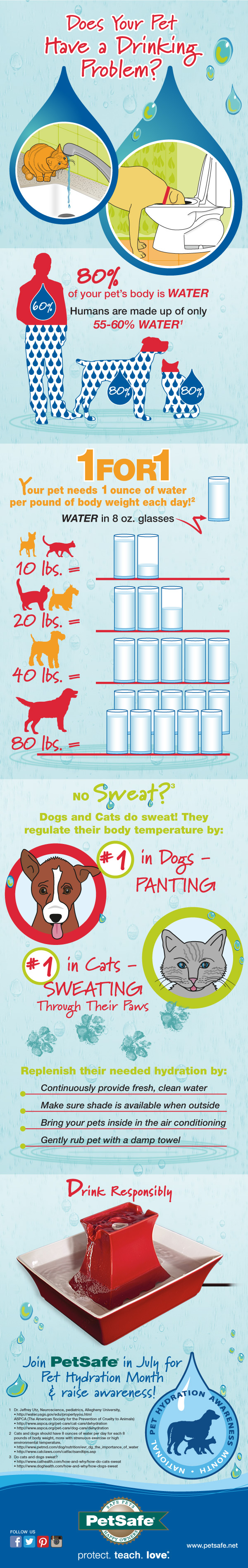 PetSafe_Pet Hydration Month Infographic 2015