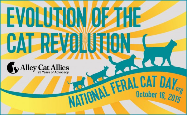 Feral Cat Day 2015