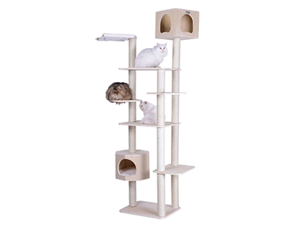 Cat Grand Prize Pure Love For Pets