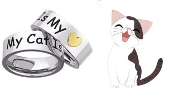 My Cat Is My Heart Ring Giveaway