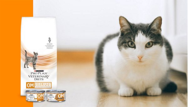 Purina OM ProPlan With Cat