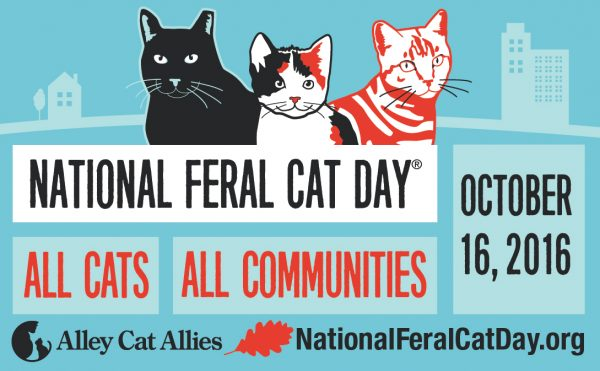 National Feral Cat Day