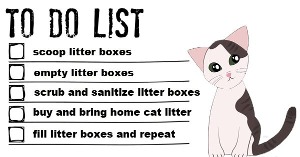 tidy direct to do list