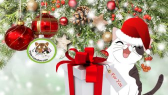 Gifts With Feline Finesse for Cat Ladies
