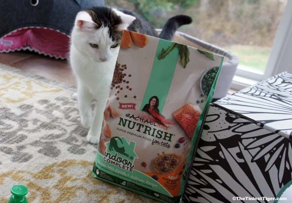 Annie with Nutrish Indoor Cat